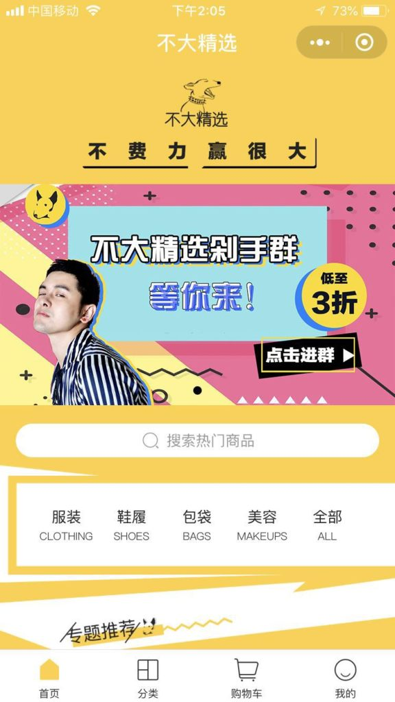 mini-program WeChat