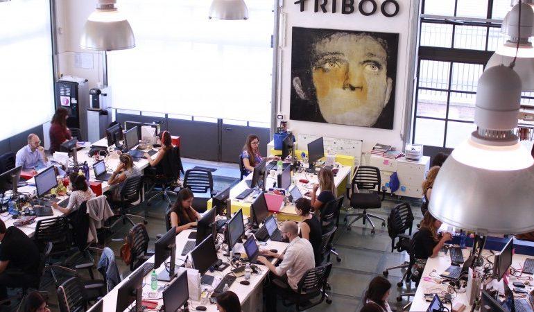 Triboo Covid19
